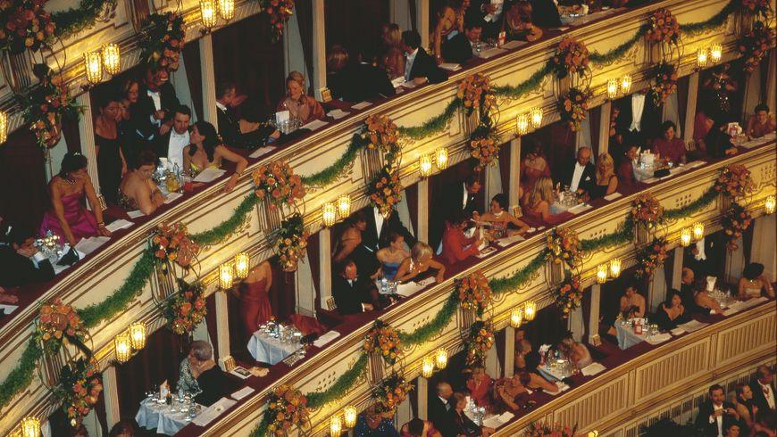 Проникнуть за кулисы Венской оперы - экскурсии