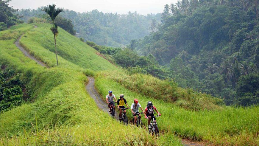 По Бали на велосипеде! - экскурсии