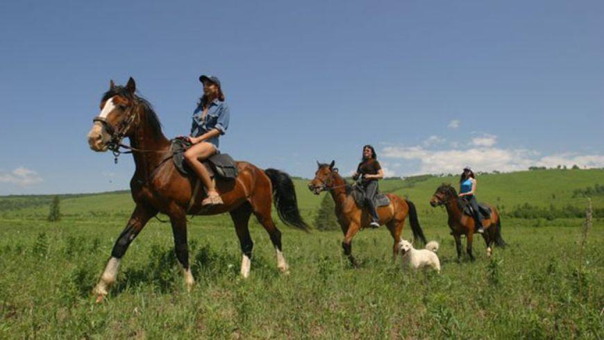 Конные прогулки по горному хребту - экскурсии