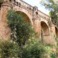 Прогулка поприродному парку «Горы Малаги» - экскурсии