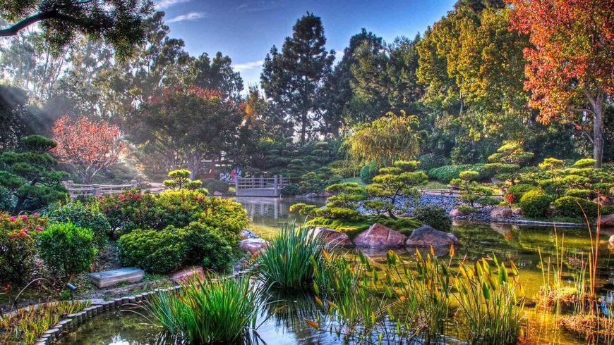 Традиционные сады ихрамы Токио - экскурсии
