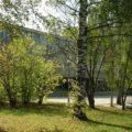 Большая прогулка по Академгородку - экскурсии