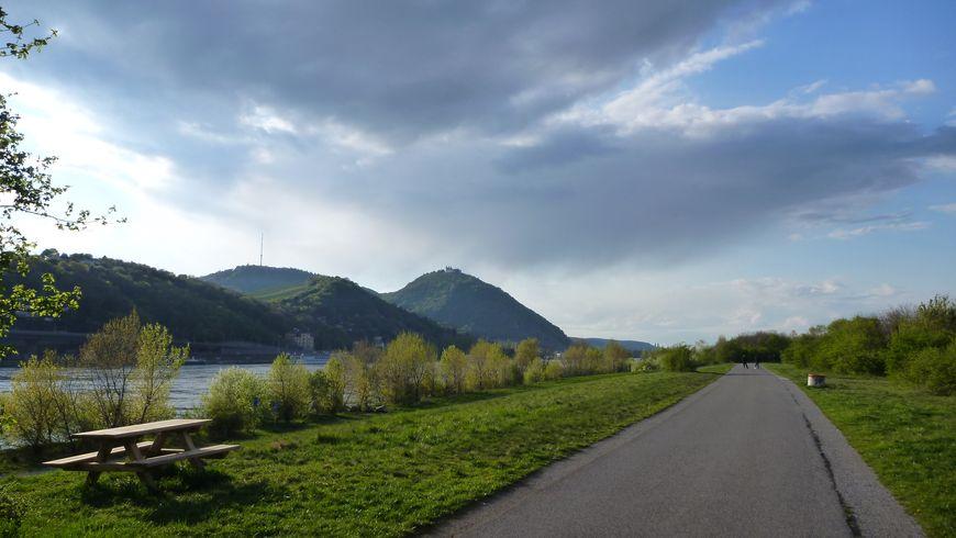 Велопрогулка вдоль Дуная к вершине Леопольдсберг - экскурсии
