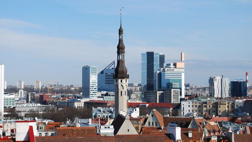 «Орел и Решка» в Таллине - экскурсии