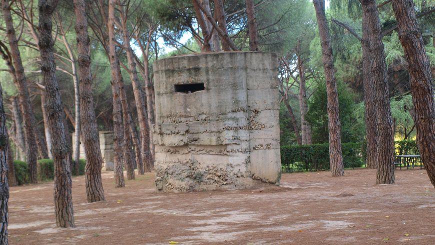 По нетуристическим тропам Мадрида - экскурсии