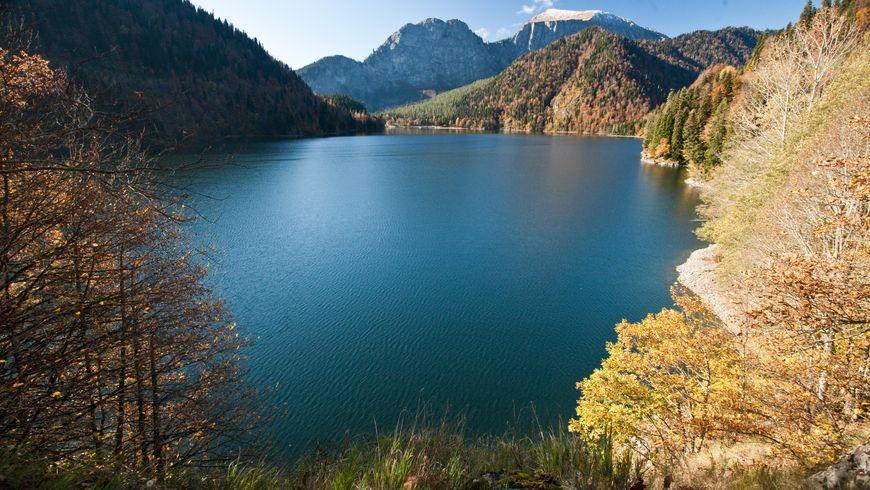 Самые живописные места Абхазии. Озеро Рица и Гегский водопад - экскурсии