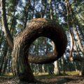 Куршская коса — жемчужина Калининградской области - экскурсии
