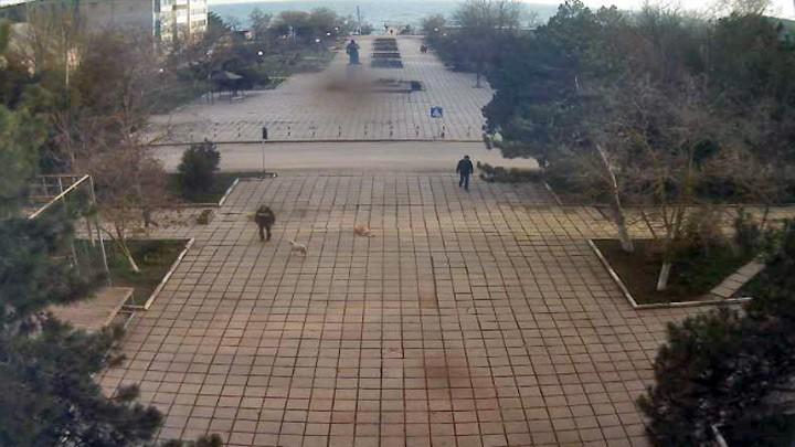 Центральная площадь поселка Приморский