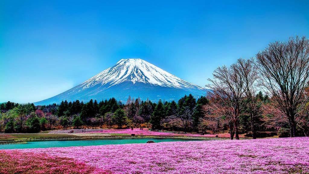 Вулкан Фудзияма - описание и расположение