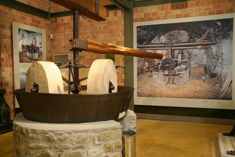 Музей олив и оливкового масла