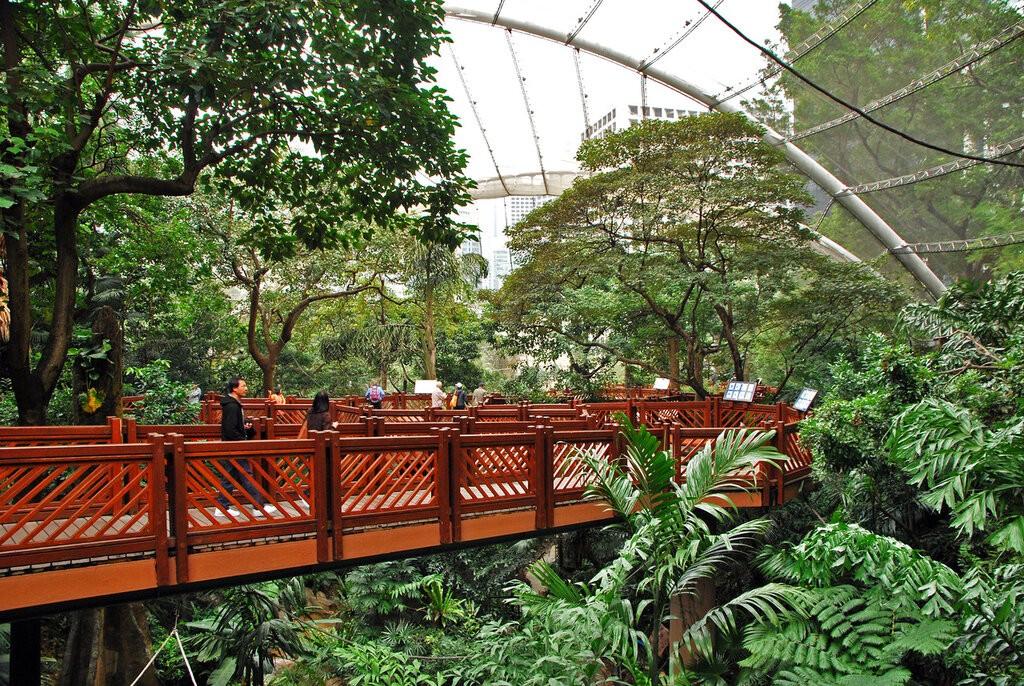 Ботанический и Зоологический сады