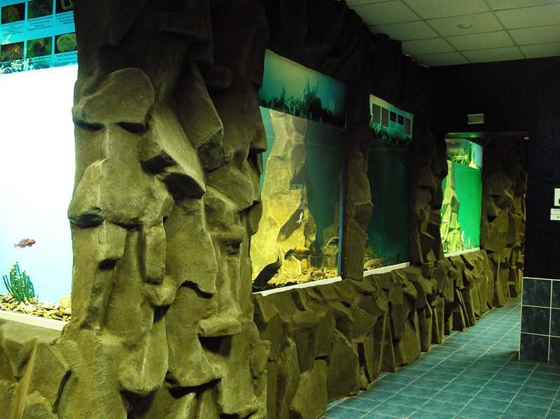Байкальский лимнологический музей