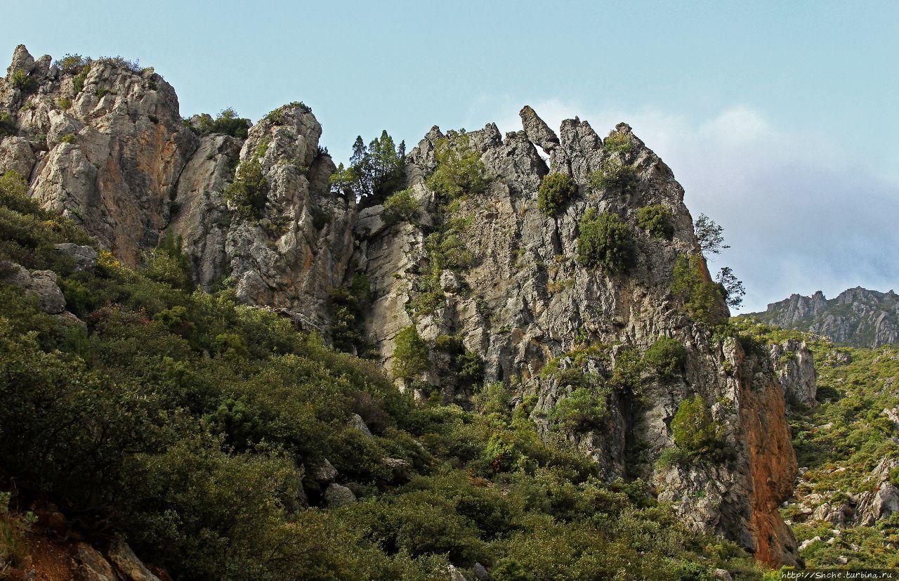 Парк Талассемтане