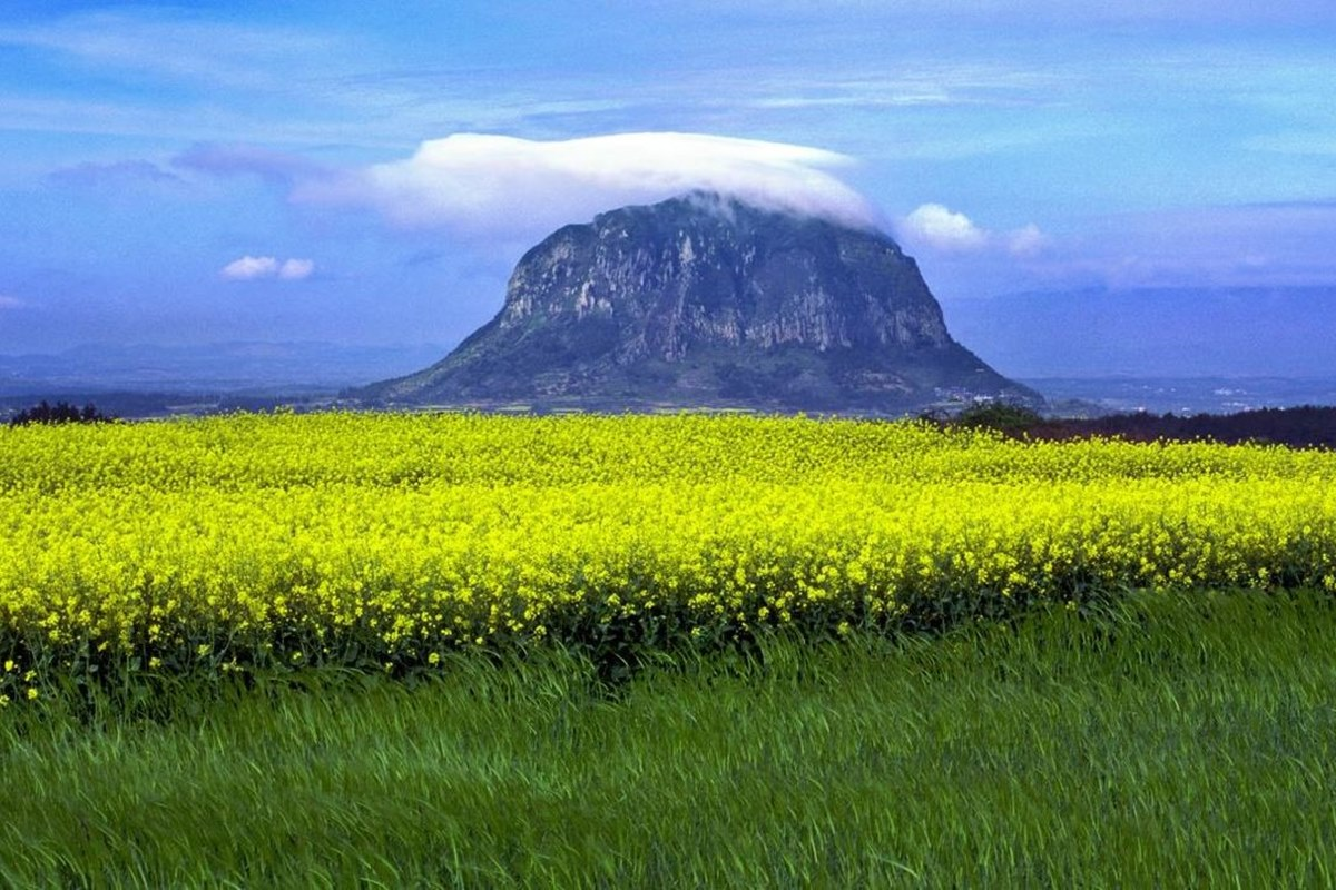 Вулкан Халласан